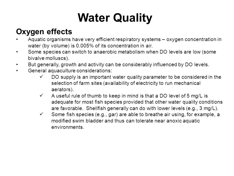 Oxygen effects Aquatic organisms have very efficient respiratory systems – oxygen concentration in water (by volume) is 0.005% of its concentration in air.
