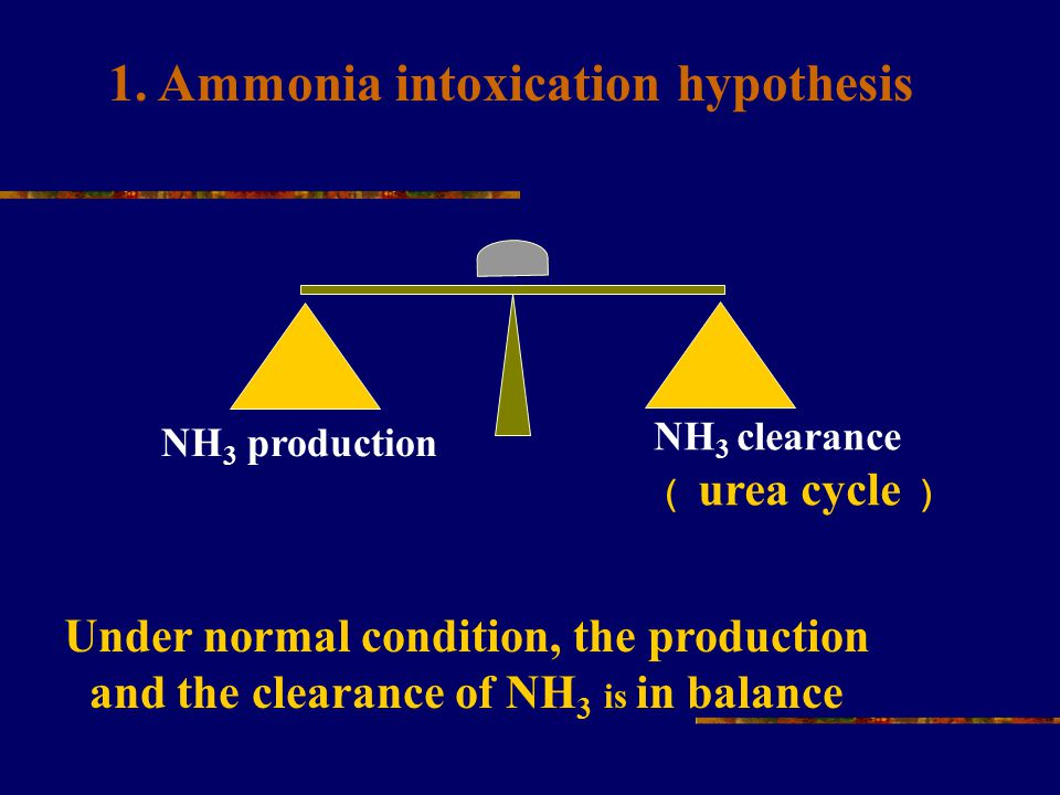 NH 3 production NH 3 clearance ( urea cycle ) 1. Ammonia intoxication hypothesis Under normal condition, the production and the clearance of NH 3 is i