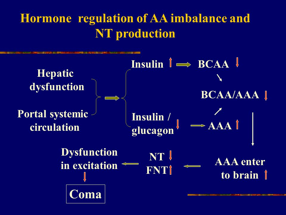 Hepatic dysfunction Portal systemic circulation Insulin BCAA Insulin / glucagon BCAA/AAA AAA enter to brain NT FNT AAA Dysfunction in excitation Coma