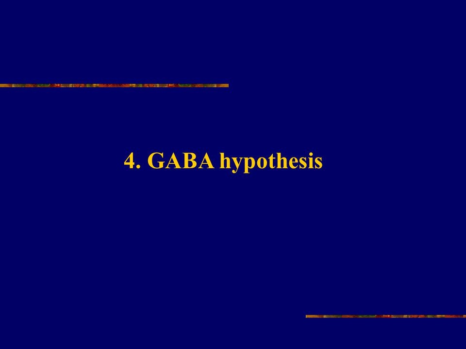 4. GABA hypothesis