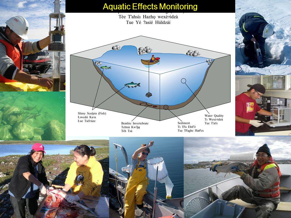 Aquatic Effects Monitoring
