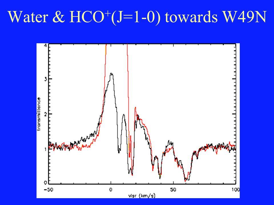 Water & HCO + (J=1-0) towards W49N