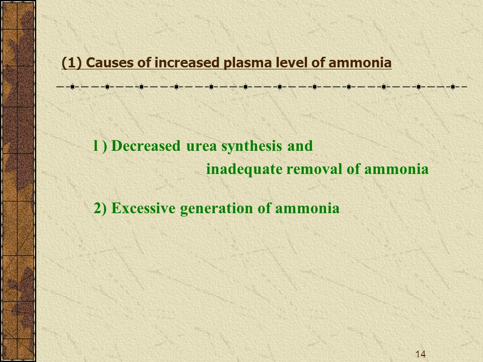 14 (1) Causes of increased plasma level of ammonia l ) Decreased urea synthesis and inadequate removal of ammonia 2) Excessive generation of ammonia