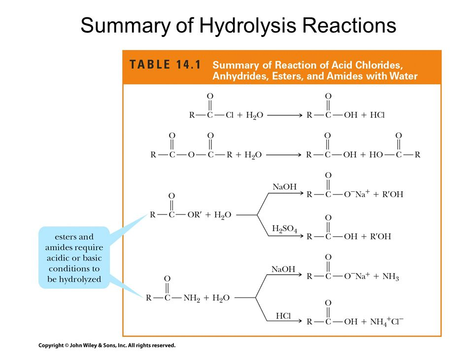 Summary of Hydrolysis Reactions