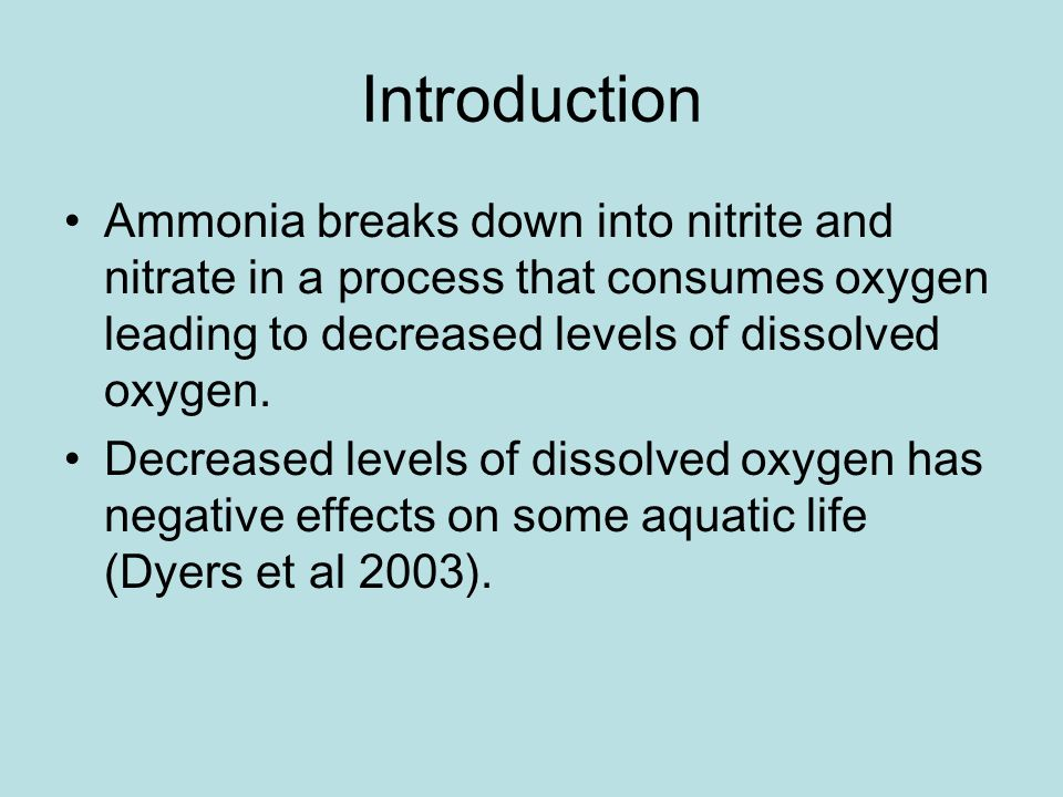 Introduction Ammonia breaks down into nitrite and nitrate in a process that consumes oxygen leading to decreased levels of dissolved oxygen.