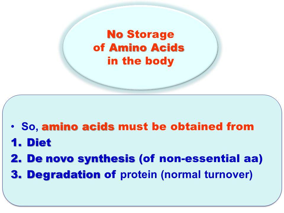 No No Storage Amino Acids of Amino Acids in the body No No Storage Amino Acids of Amino Acids in the body amino acidsSo, amino acids must be obtained from 1.Diet 2.De novo synthesis 2.De novo synthesis (of non-essential aa) 3.Degradation 3.Degradation of protein (normal turnover) amino acidsSo, amino acids must be obtained from 1.Diet 2.De novo synthesis 2.De novo synthesis (of non-essential aa) 3.Degradation 3.Degradation of protein (normal turnover)