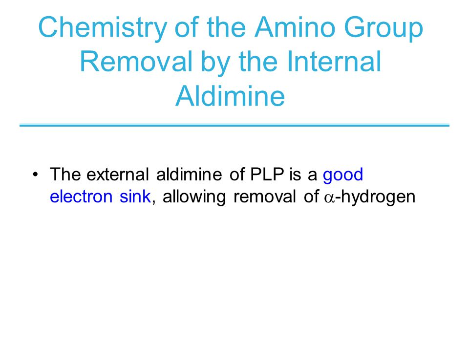 Chemistry of the Amino Group Removal by the Internal Aldimine The external aldimine of PLP is a good electron sink, allowing removal of  -hydrogen