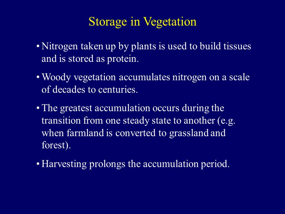 Nitrogen taken up by plants is used to build tissues and is stored as protein.