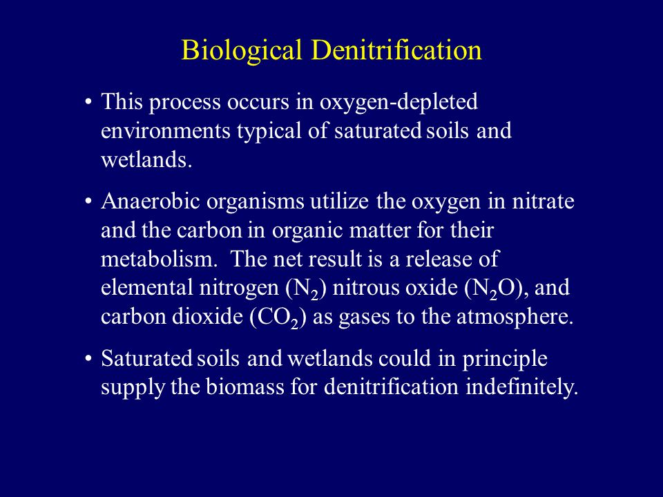 This process occurs in oxygen-depleted environments typical of saturated soils and wetlands.