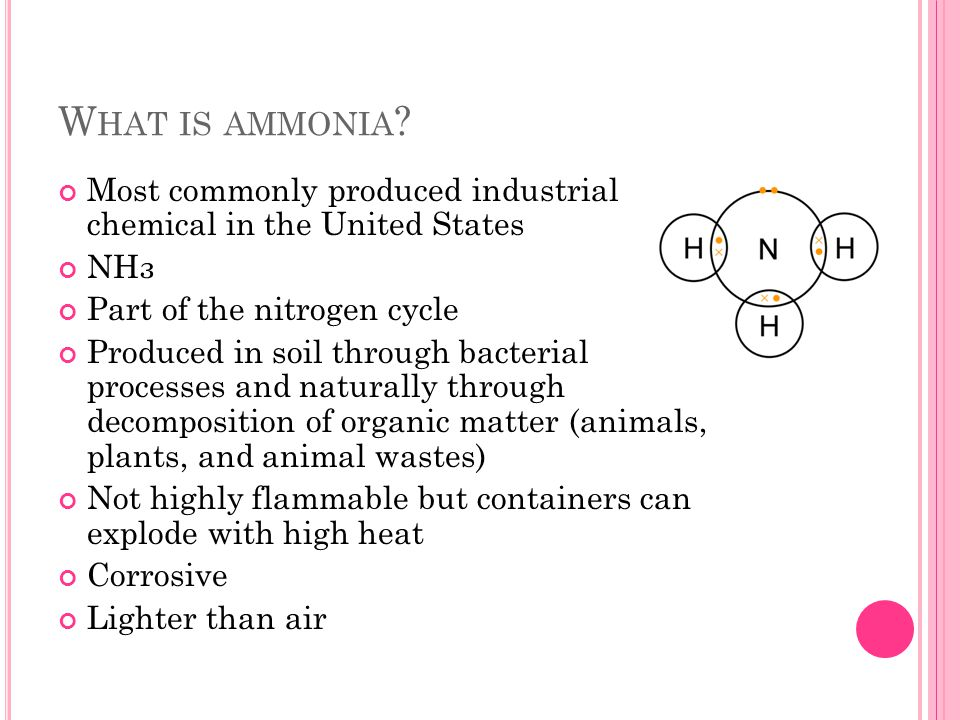W HAT IS AMMONIA .