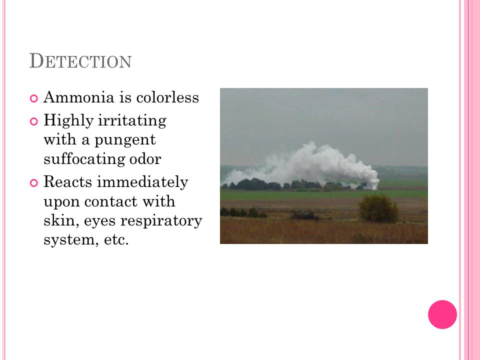 D ETECTION Ammonia is colorless Highly irritating with a pungent suffocating odor Reacts immediately upon contact with skin, eyes respiratory system, etc.