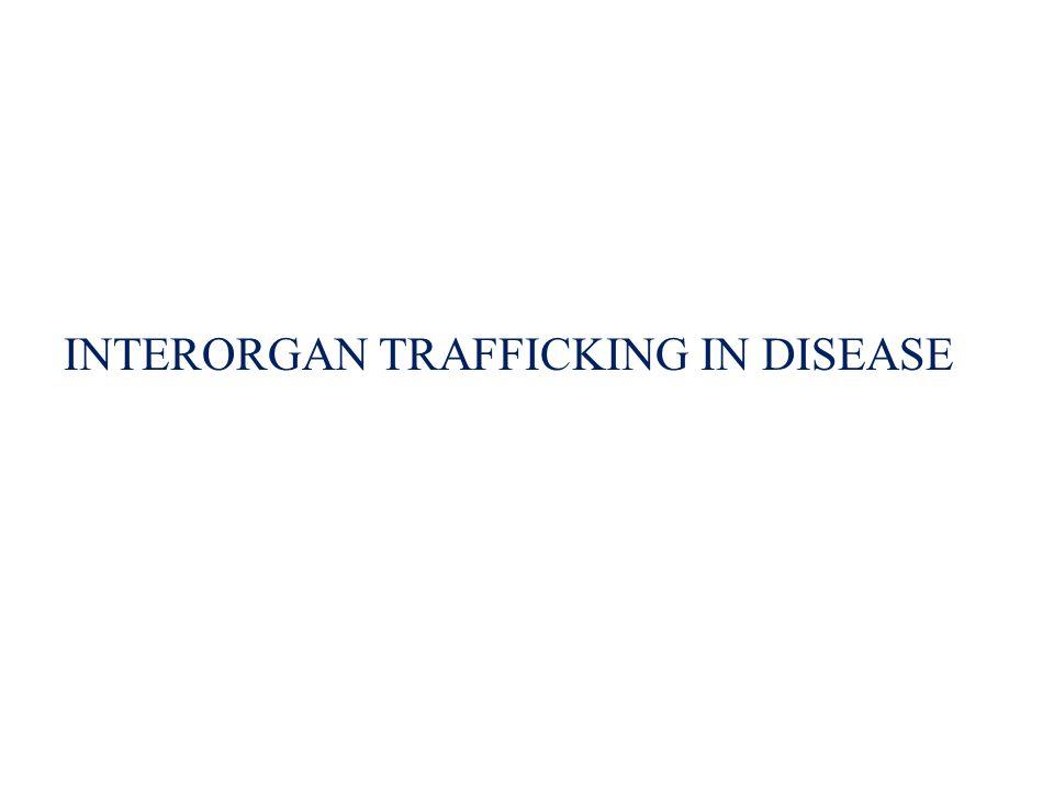 INTERORGAN TRAFFICKING IN DISEASE