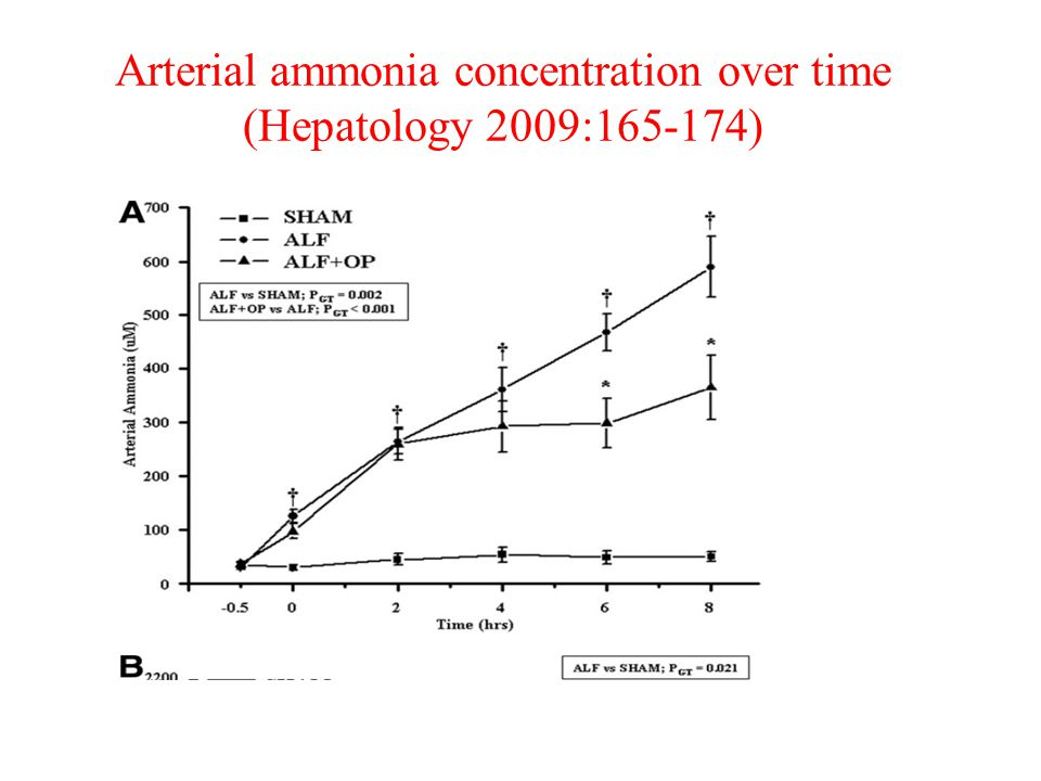 Arterial ammonia concentration over time (Hepatology 2009:165-174)
