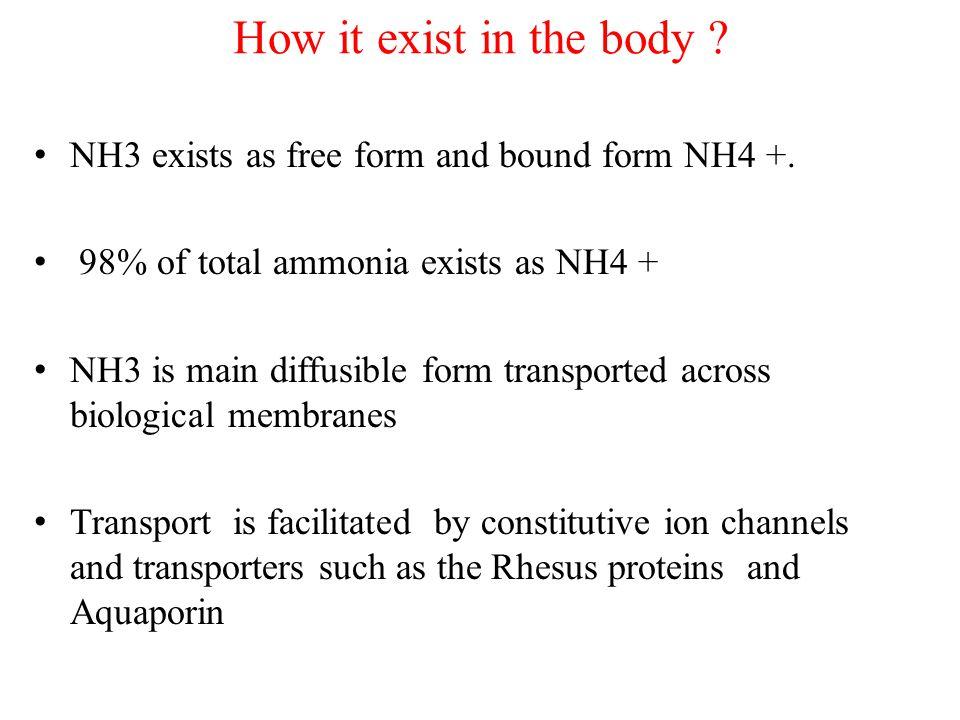 Sources of ammonia Dietary amino acid Dietary amine Intestinal bacteria Glutamine Nucleic acid