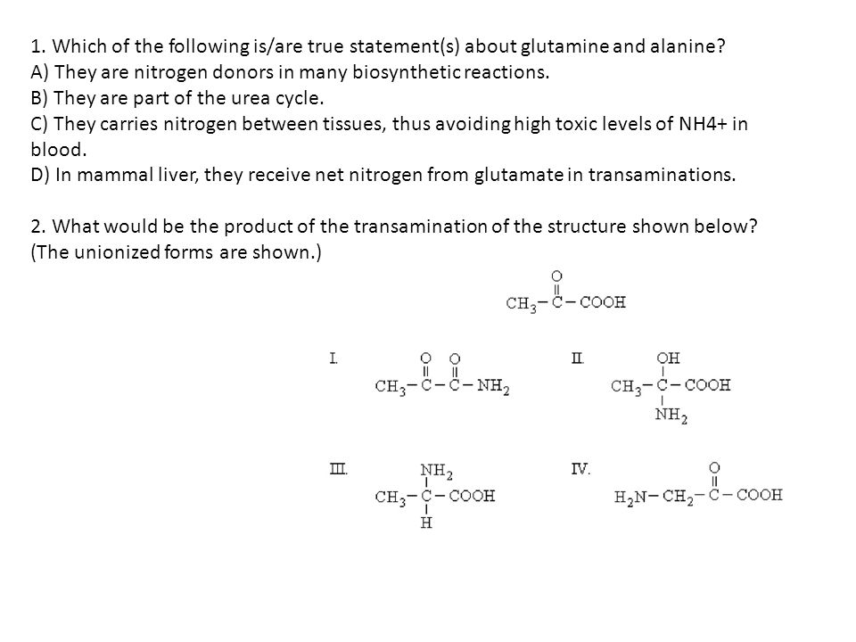1. Which of the following is/are true statement(s) about glutamine and alanine.
