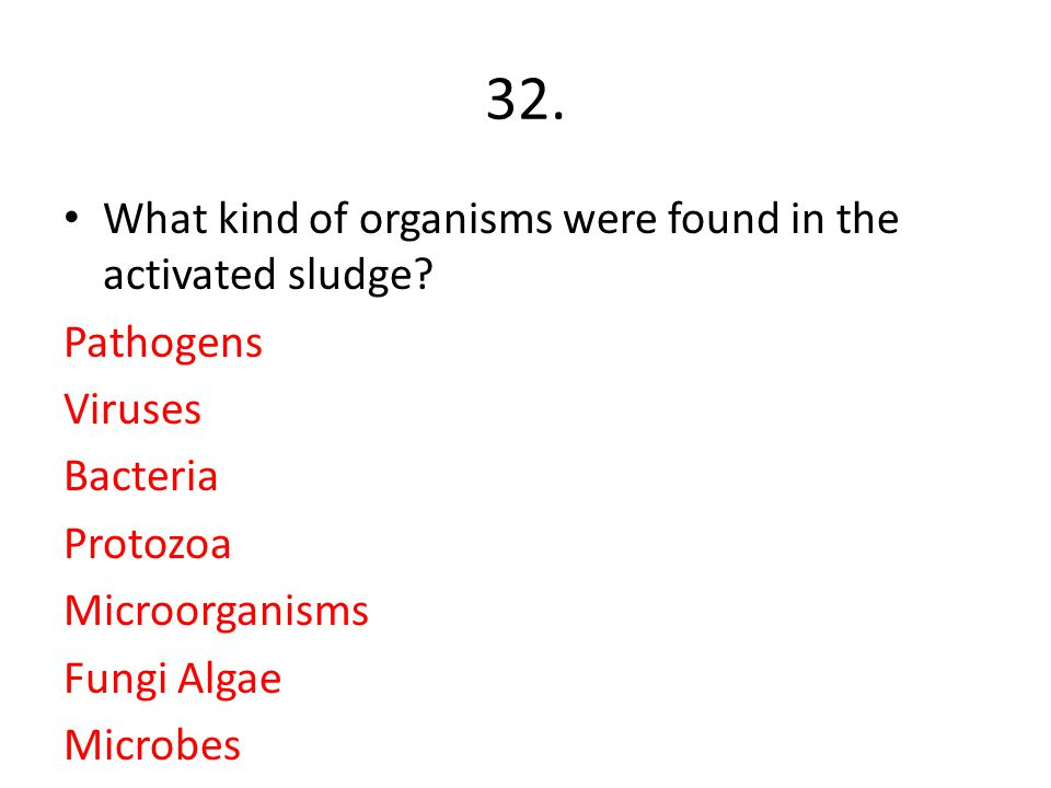 32. What kind of organisms were found in the activated sludge? Pathogens Viruses Bacteria Protozoa Microorganisms Fungi Algae Microbes