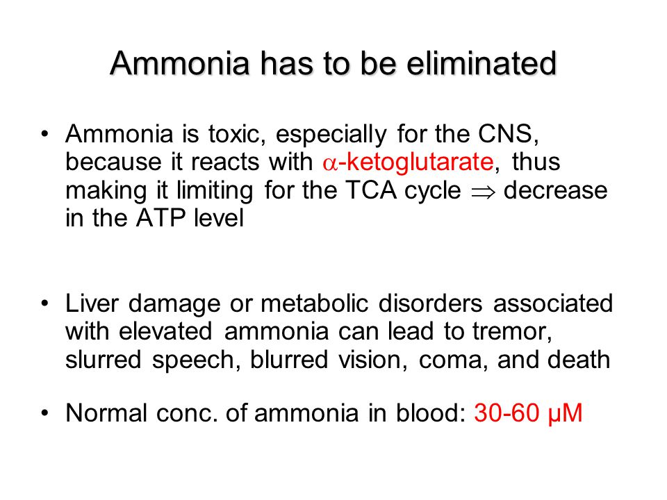 Ammonia has to be eliminated Ammonia is toxic, especially for the CNS, because it reacts with  -ketoglutarate, thus making it limiting for the TCA cy