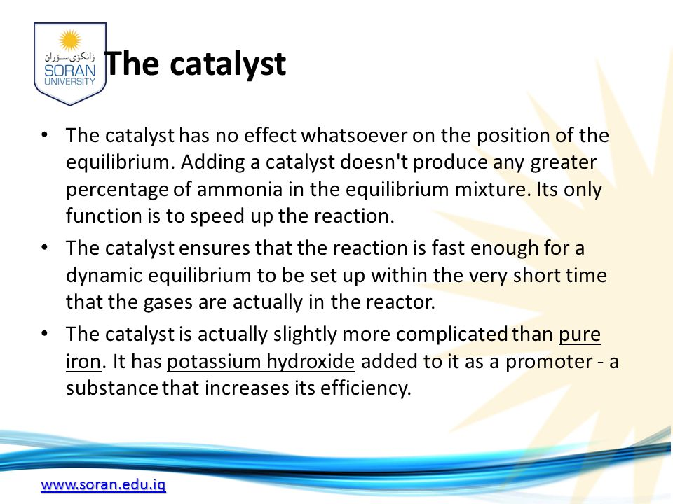 www.soran.edu.iq The catalyst The catalyst has no effect whatsoever on the position of the equilibrium.
