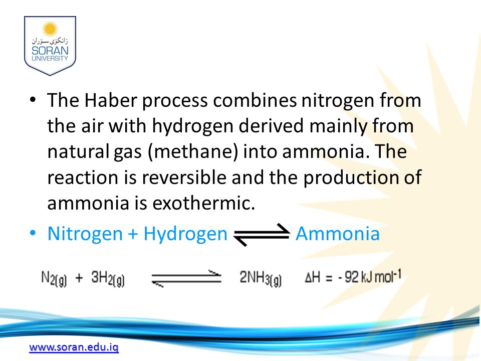 www.soran.edu.iq The Haber process combines nitrogen from the air with hydrogen derived mainly from natural gas (methane) into ammonia.