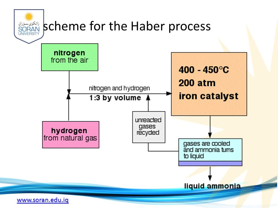 www.soran.edu.iq scheme for the Haber process