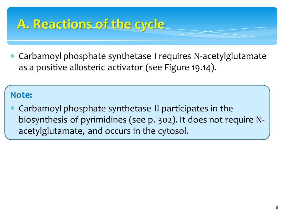  Figure 19.19 Metabolism of ammonia. 30