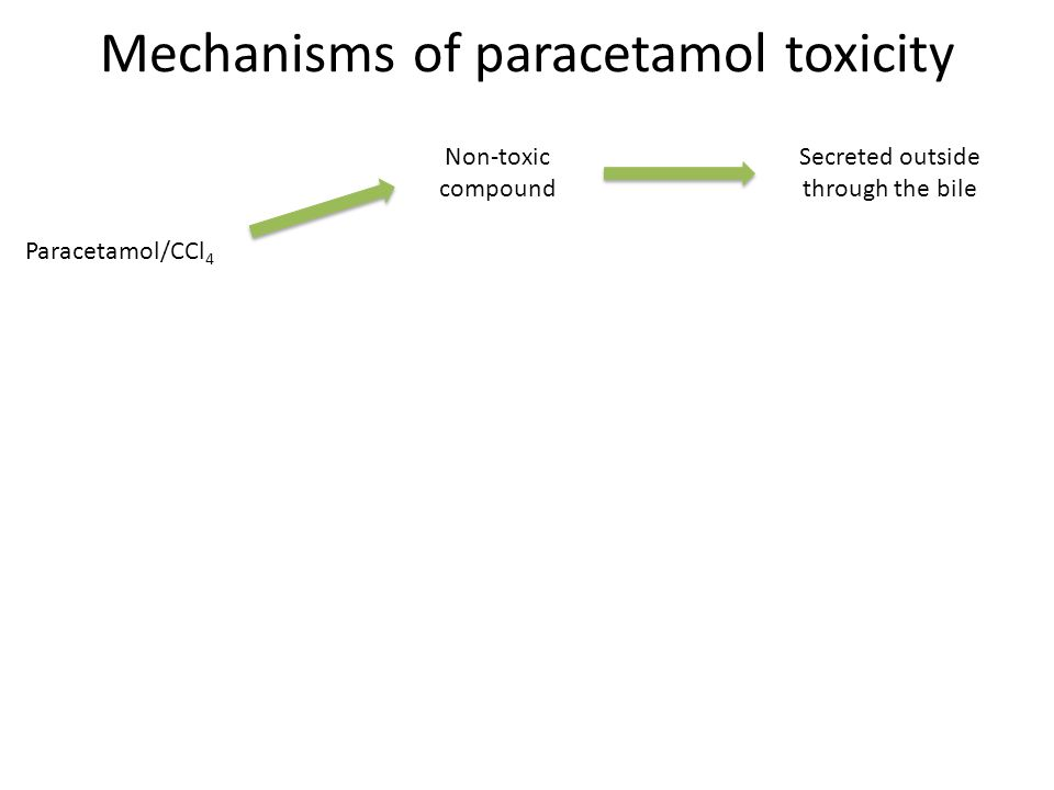 Mechanisms of paracetamol toxicity Paracetamol/CCl 4 Non-toxic compound Secreted outside through the bile