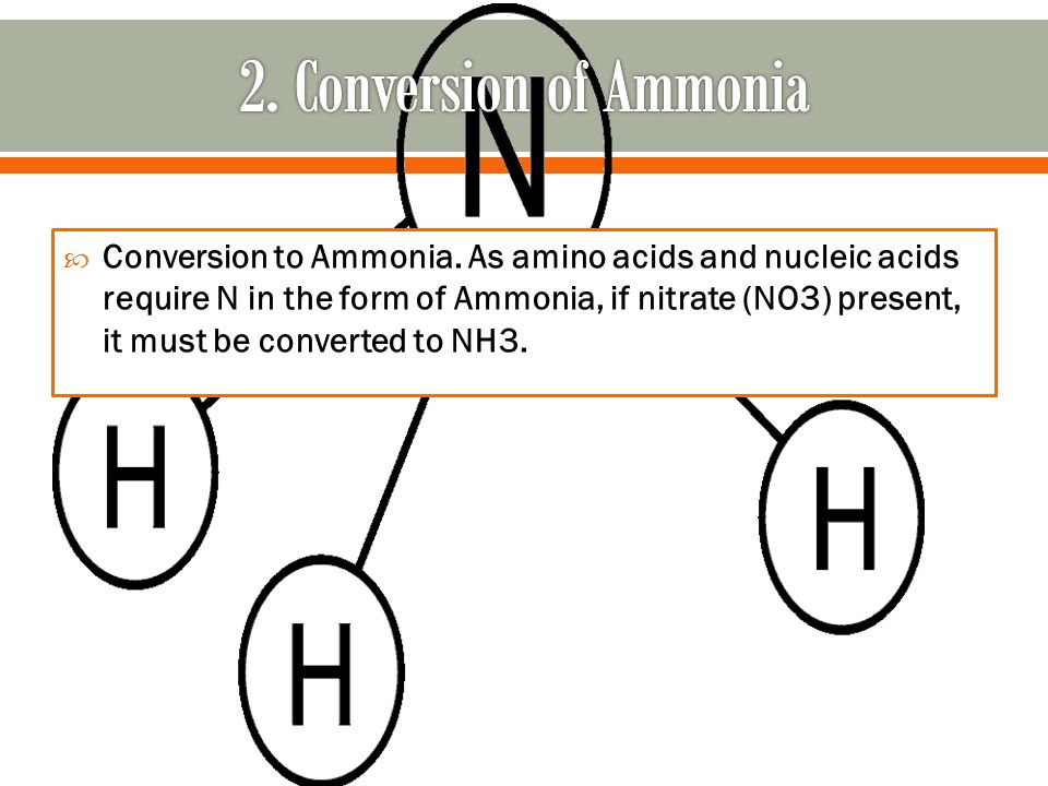  Conversion to Ammonia.