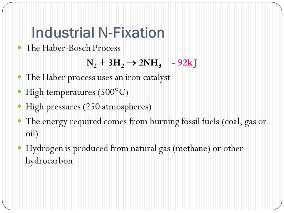 Industrial N-Fixation The Haber-Bosch Process N 2 + 3H 2  2NH 3 - 92kJ The Haber process uses an iron catalyst High temperatures (500°C) High pressures (250 atmospheres) The energy required comes from burning fossil fuels (coal, gas or oil) Hydrogen is produced from natural gas (methane) or other hydrocarbon