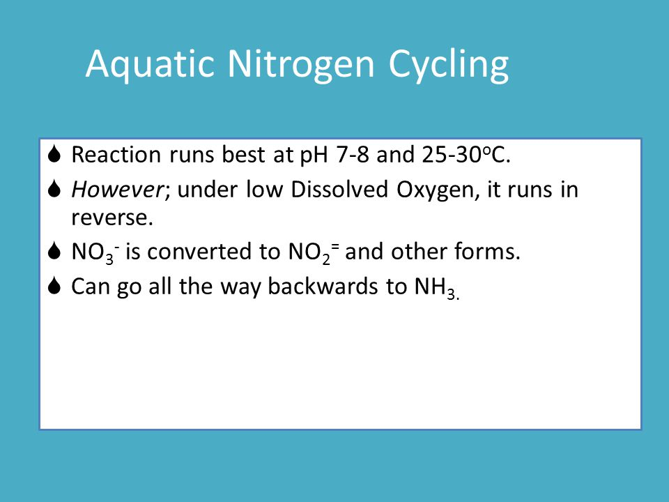  Reaction runs best at pH 7-8 and 25-30 o C.  However; under low Dissolved Oxygen, it runs in reverse.  NO 3 - is converted to NO 2 = and other for