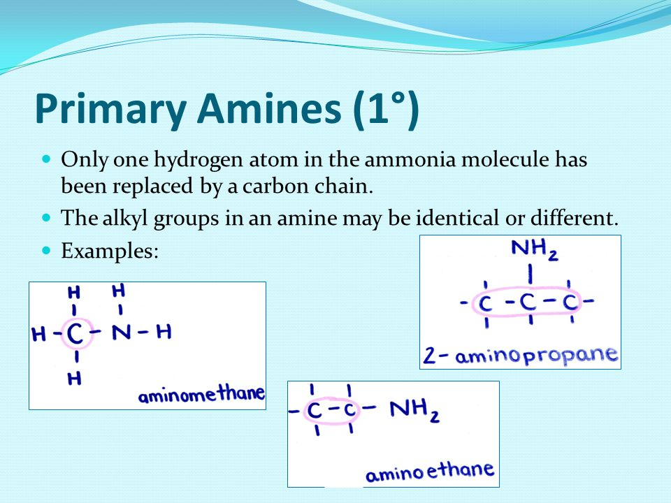 Bibliography http://hyperphysics.phy-astr.gsu.edu/hbase/organic/amine.html http://www.chemguide.co.uk/organicprops/amines/background.html http://www2.chemistry.msu.edu/faculty/reusch/VirtTxtJml/amine1.ht m http://www2.chemistry.msu.edu/faculty/reusch/VirtTxtJml/amine1.ht m http://www.wisegeek.com/what-are-amines.htm http://www.chemguide.co.uk/organicprops/amines/background.html http://www.chemguide.co.uk/organicprops/amines/background.html Fraser, D., LeDrew, B., Vavitsas, A., & White-McMahon, M.