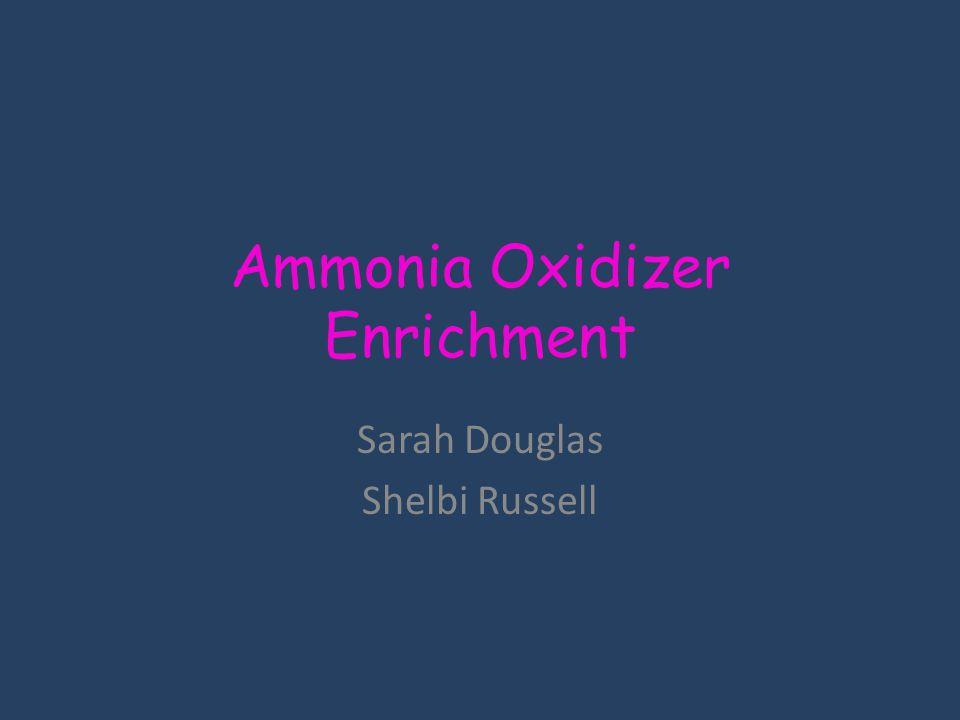 Ammonia Oxidizer Enrichment Sarah Douglas Shelbi Russell