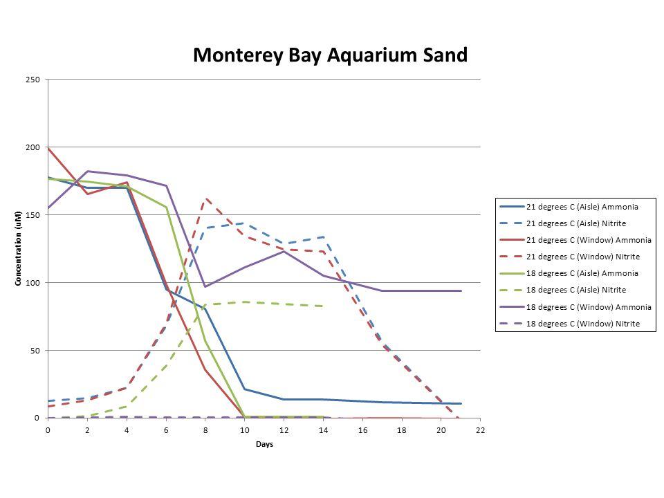 Monterey Bay Aquarium Bradley's experiment Added 200 uM Ammonia