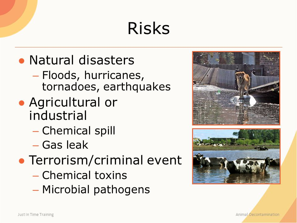 Risks ●Natural disasters – Floods, hurricanes, tornadoes, earthquakes ●Agricultural or industrial – Chemical spill – Gas leak ●Terrorism/criminal even