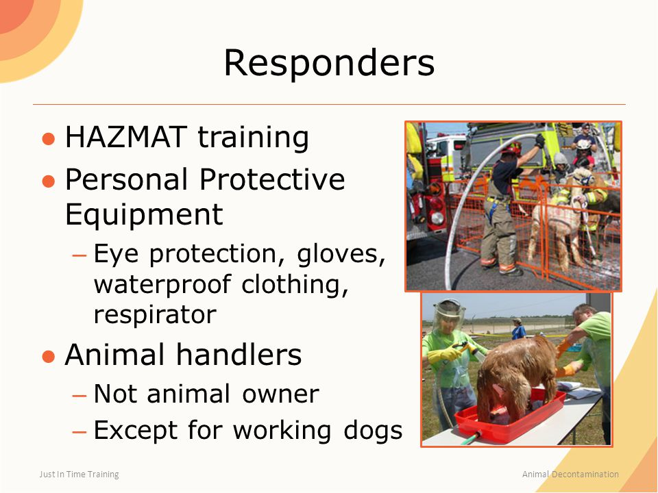 Responders ●HAZMAT training ●Personal Protective Equipment – Eye protection, gloves, waterproof clothing, respirator ●Animal handlers – Not animal own