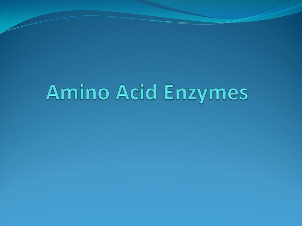 Phenylalanine deaminase Phenylalanine Phenylpyruvic acid + ammonia FeCl2 (Ferric Chloride) HCl Green