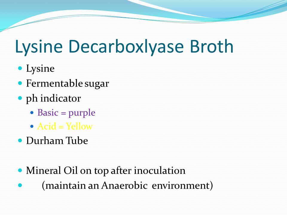 Lysine decarboxylase broth
