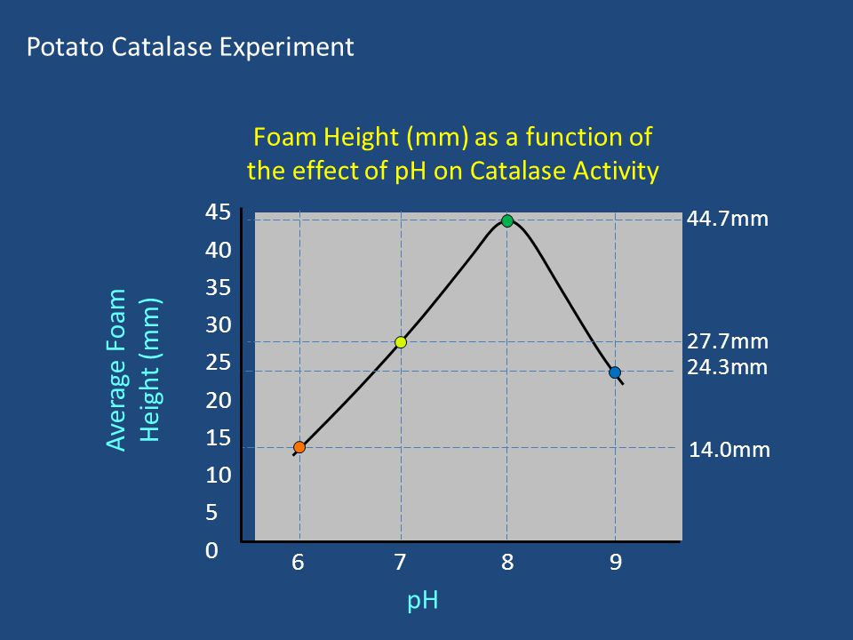 Foam Height (mm) as a function of the effect of pH on Catalase Activity Potato Catalase Experiment pH 6 7 8 9 Average Foam Height (mm) 45 40 35 30 25 20 15 10 5 0 44.7mm 24.3mm 14.0mm 27.7mm