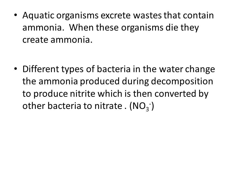 Aquatic organisms excrete wastes that contain ammonia.