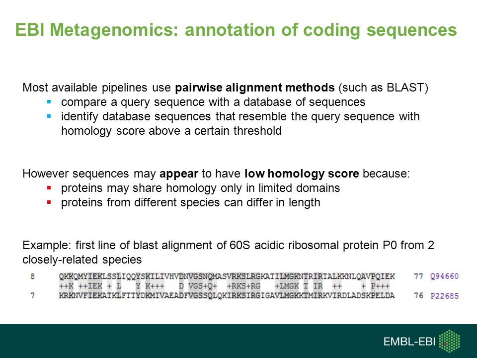 Most available pipelines use pairwise alignment methods (such as BLAST)  compare a query sequence with a database of sequences  identify database sequences that resemble the query sequence with homology score above a certain threshold However sequences may appear to have low homology score because:  proteins may share homology only in limited domains  proteins from different species can differ in length Example: first line of blast alignment of 60S acidic ribosomal protein P0 from 2 closely-related species EBI Metagenomics: annotation of coding sequences