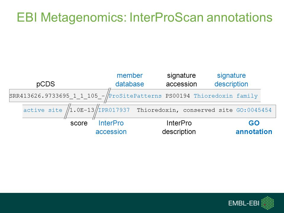 EBI Metagenomics: InterProScan annotations pCDS member database signature accession signature description scoreInterPro accession InterPro description SRR413626.9733695_1_1_105_- ProSitePatterns PS00194 Thioredoxin family active site 1.0E-13 IPR017937Thioredoxin, conserved siteGO:0045454 GO annotation