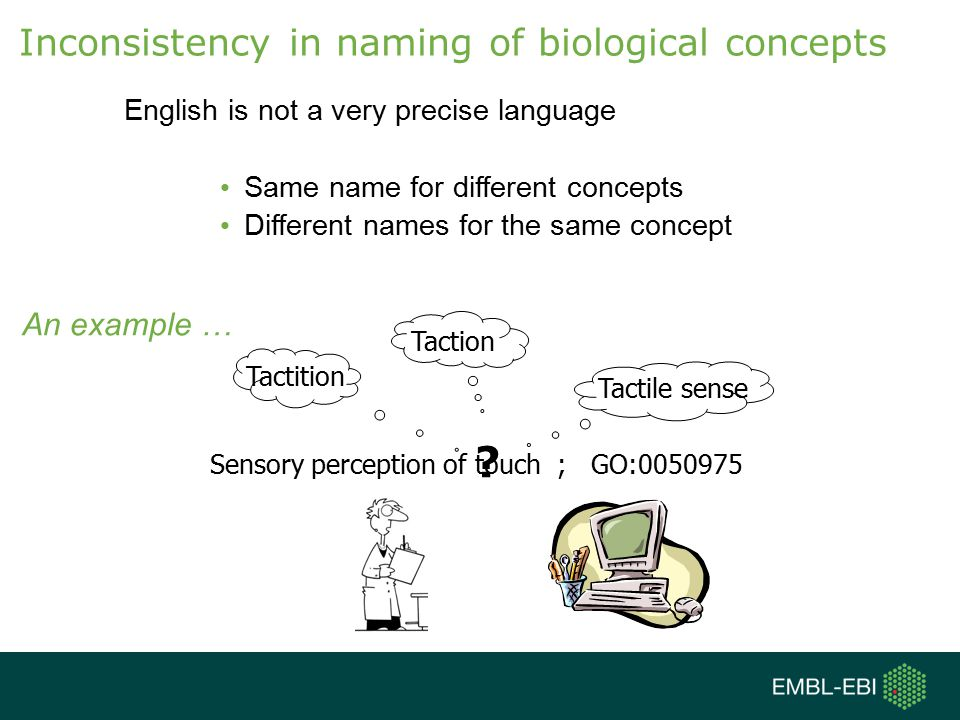 English is not a very precise language Same name for different concepts Different names for the same concept Inconsistency in naming of biological concepts .