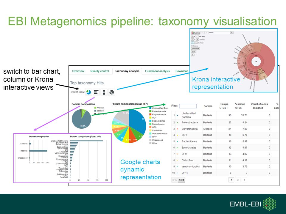 EBI Metagenomics pipeline: taxonomy visualisation switch to bar chart, column or Krona interactive views Google charts dynamic representation Krona interactive representation