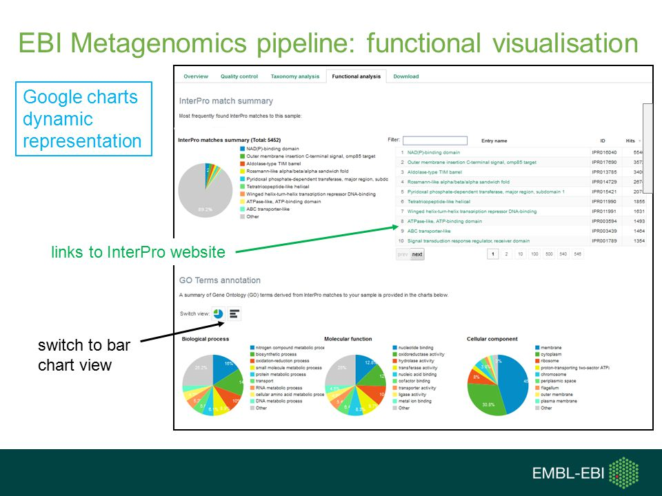 Google charts dynamic representation switch to bar chart view links to InterPro website EBI Metagenomics pipeline: functional visualisation