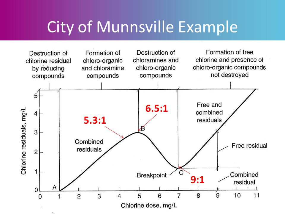 Wastewater Treatment Plants & Bacteria: Strategies for Compliance City of Munnsville Example 6.5:1 9:1 5.3:1