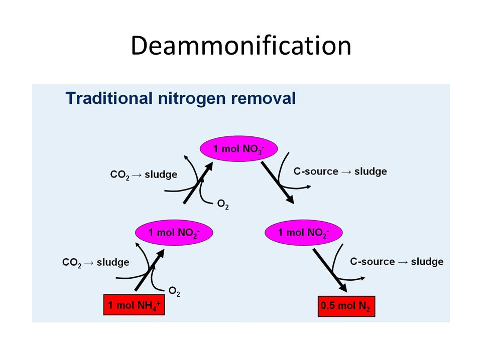 Deammonification