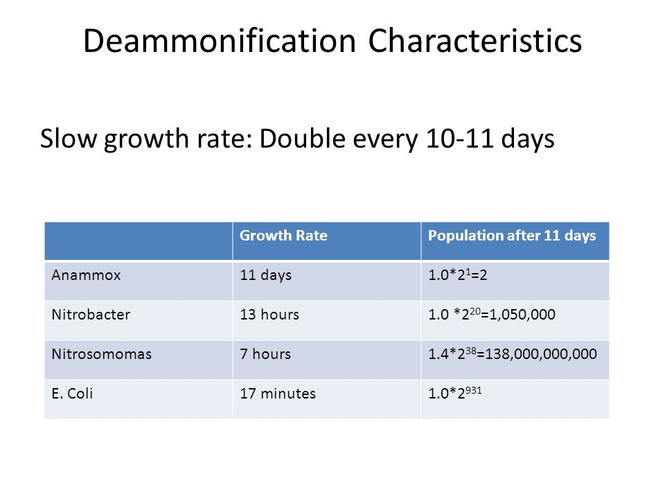 Deammonification Characteristics Slow growth rate: Double every 10-11 days Growth RatePopulation after 11 days Anammox11 days1.0*2 1 =2 Nitrobacter13 hours1.0 *2 20 =1,050,000 Nitrosomomas7 hours1.4*2 38 =138,000,000,000 E.