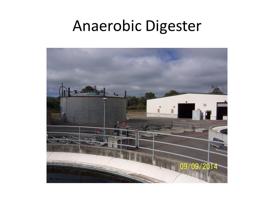 Anaerobic Digester
