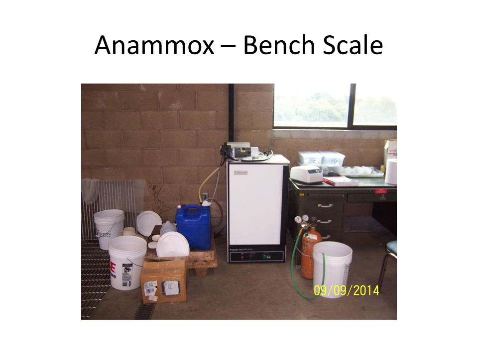 Anammox – Bench Scale