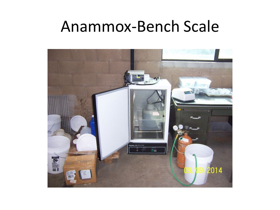 Anammox-Bench Scale