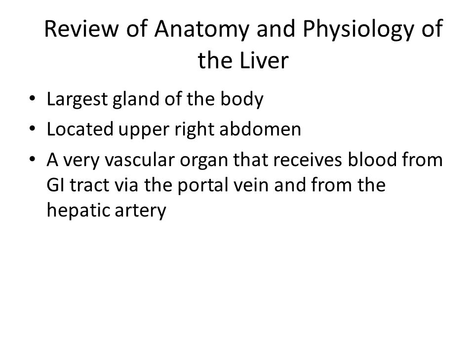 Review of Anatomy and Physiology of the Liver Largest gland of the body Located upper right abdomen A very vascular organ that receives blood from GI
